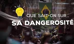 Variant brésilen : pourquoi inquiète-t-il autant ? - Journal de 20 heures