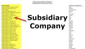 Subsidiary Company Examples Levels How Does It Work