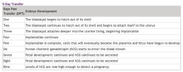 Bright Hcg Levels Chart After Ivf Transfer Ivf Beta Hcg
