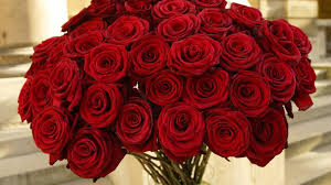 beautiful red roses flowers bouquet wallpaper