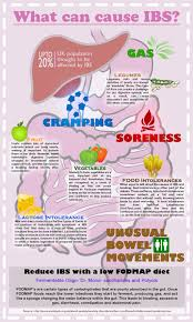 Irritable Bowel Syndrome Diet Chart How To Treat An Ibs Flare Up
