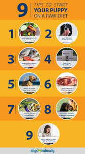 Starting Your Puppy On A Raw Diet Dogs Naturally Magazine