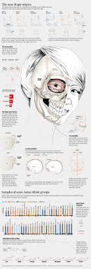 Description of asian face