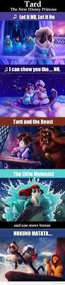 The New Disney Princess Funny Grumpy Cat Pics