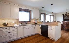 Corner Kitchen Cabinet Solutions Corner Kitchen Cabinet A Blind Corner Kitchen Cabinet Solutions