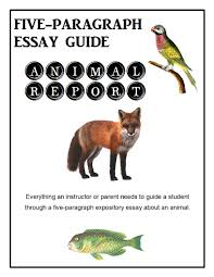 five paragraph essay guide animal report wordplay workshop five paragraph essay guide