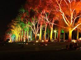 led lights on cool light ideas lighted plastic outdoor decoration pretty things to hang from trees