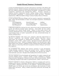 Example Of Profile Summary For Resume 8 Sample Professional Summary ...