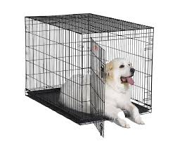 amazoncom  midwest  icrate folding metal dog crate w divider