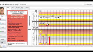 Electronic Patient Chart Vitro Overview Features Your Electronic Patient Chart