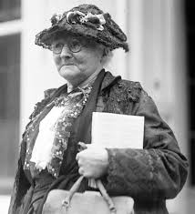 call for irish history essays warwick greenwood lake ny local news level 2 students in grades 9 through 12 are asked to write an essay about mother jones pictured here in 1924 and the american labor movement