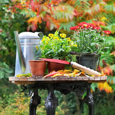 15 Fall Gardening Tips U0026 InspirationFall Gardening