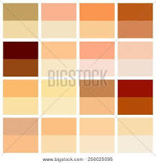 Skin Tone Color Chart Skin Tone Color Chart Vector Photo Free Trial Bigstock