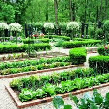garden designs vegetable design ideas modern home tips regarding parterre