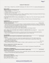 Great Resume Examples For College Students Free Resume Examples