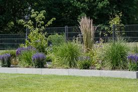 Garten | blaues Beet #gräser #beetgestaltung #outdoor #gartenidee ...