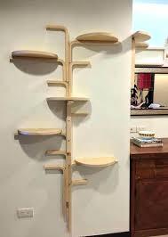 cat shelf diy cat shelf ideas cat shelf best cat shelves ideas on cat wall shelves cat shelf diy cat clbing shelves