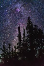 painted painting painted night sky by cactus sun studio