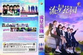 chinese drama meteor garden 2018 流星花