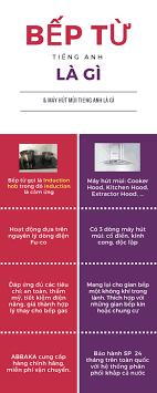 Infographic bếp từ tiếng anh là gì và một số kiến thức về bếp từ người dùng  cần biết