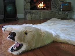 image of polar bear skin rugs