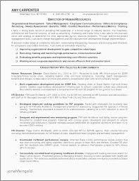 modern pilot resume 25 luxury free modern resume templates pics gerald neal