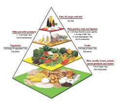 The Malaysian Food Pyramid Download Scientific Diagram