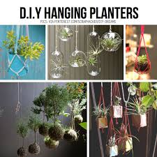 Hanging planter diy ideas can have kids do...paint cans white hang from
