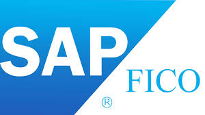 Sap Fico Images Resume Cv Cover Letter