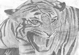 D Un Tigre Rugissant