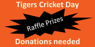 Cricket Day Raffle Prize Donations Telford Tigers