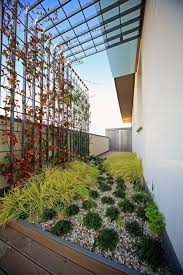 Courtyard Plants Design Decorating Small Courtyard With Green Plants 3 Good Ideas
