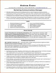 Resume Opening Statement Examples Opening Statement Examples Sop Example 11