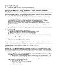 Technology Sales Resume Sales Professional Resume Sample Simple Resume Format