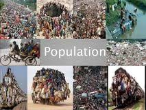 essay about population in immigration thesis website essay about population in
