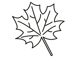 Small Picture Maple Leaf Coloring Page jacbme
