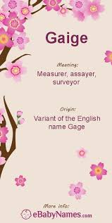 gage name. meaning of gaige: this is a variant spelling the name gage, which an english occupation surname that means \ gage