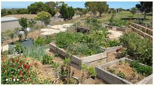 Small Picture Kitchen Garden Schools Adelaide Tour Sustainable Cities Network