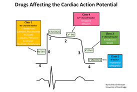 Types Of Arrhythmia Chart Antiarrhythmic Agent Wikipedia