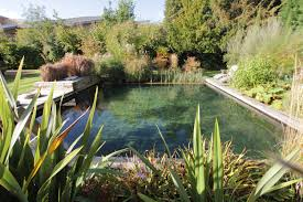 Swimming Hole Pool Design 10 Diy Swimming Pool Tips Swimming Pool Construction Cwr