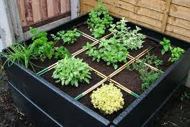Best 25  Small herb gardens ideas on Pinterest   Indoor herbs  Diy further Best 25  Small herb gardens ideas on Pinterest   Indoor herbs  Diy additionally  also Best 25  Small herb gardens ideas on Pinterest   Indoor herbs  Diy as well  together with Herb Garden Plants   Gardening Ideas besides  additionally Herb And Flower Garden Design   Unique Hardscape Design   A Simple as well  likewise  also . on design herb garden