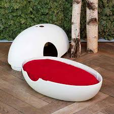 cat house uovo