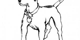 Small Picture Coloring Pages Of Animals That Look Real Coloring Pages