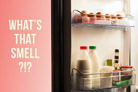 refrigerator under 1000. 5 steps to pinpointing that awful smell in your fridge refrigerator under 1000