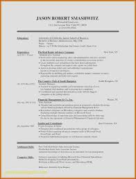 Download Resume Templates For Microsoft Word 2010 Free Download Resume Format In Ms Word Elegant Admin Executive