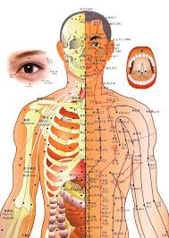 Acupuncture Wall Charts Download Acupuncture Chart Chinese Medicine Editorial Photography