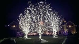 tree lighting ideas. Outdoor Tree Lights Lighting Ideas A Solar . G