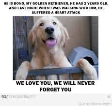 m2hqh2zc1qiizxso1 500 i miss you sad dog photo greeting card r9b0f1dcdf3734f95a1a00759bb64ce56 xvuat 8byvr 324 492cfa6b63369b0c905cc0ce79f665c6