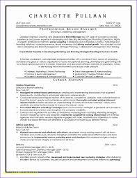 Executive Resume Writing Service Dallas Incredible Dallas Resume