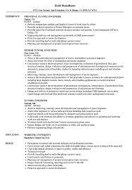 Resume Job Titles Tunnel Engineer Resume Samples Velvet Jobs 20